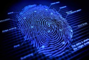 photo take from https://forensicsciencelaw12.wikispaces.com/Fingerprints