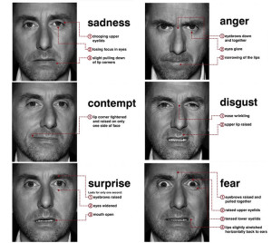 micro_expressions_tim_roth1